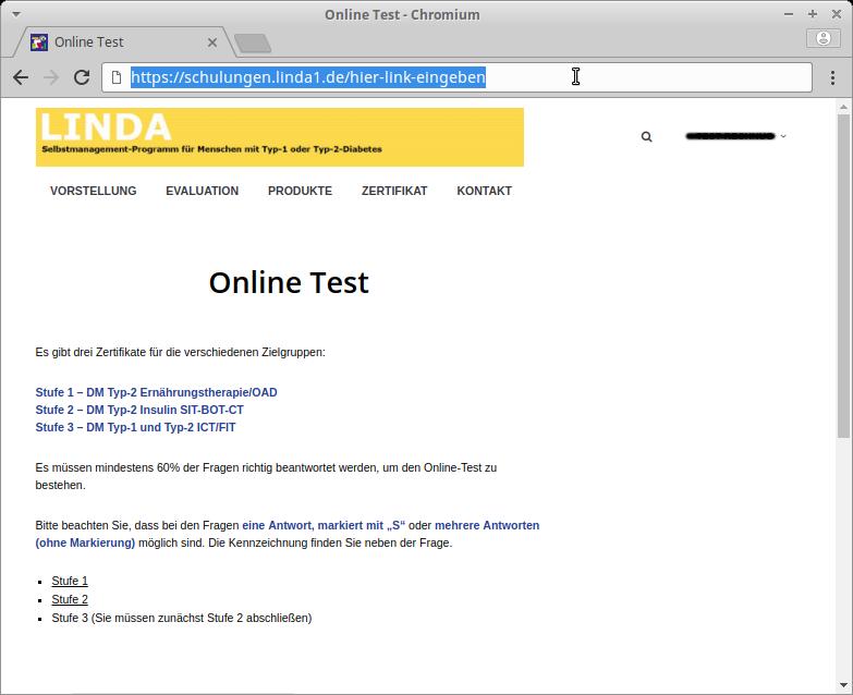 Screenshot Startseite Online Test
