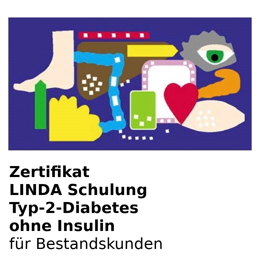 Produktbild Zertifikat Diabetes Schulung Typ-2 Diabetes ohne Inslulin